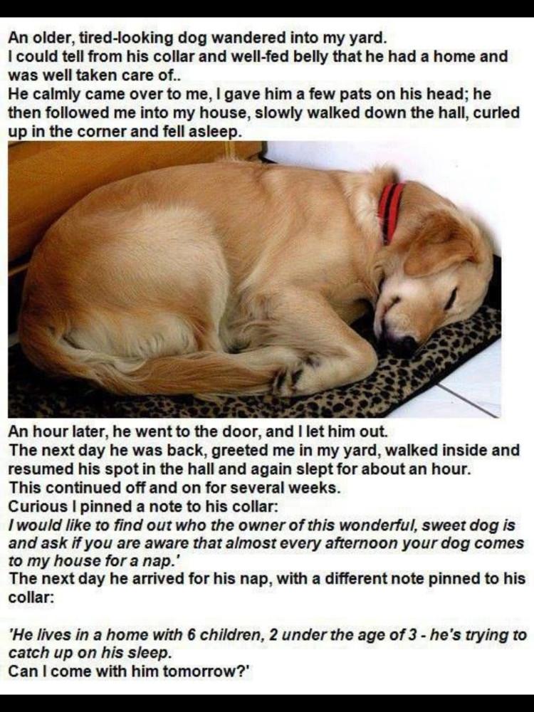 A Good Neighbor!
