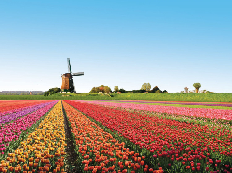 Need Something To Brighten Your Day? Here Are 10 Of The Most Colorful And Beautiful Places In The World!