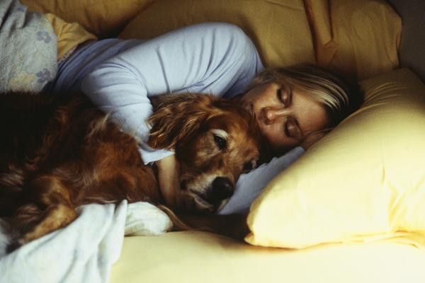 5 Reasons Why You Should Own A Dog