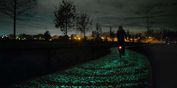 Bike Path In The Netherlands Illuminates The Road At Night!