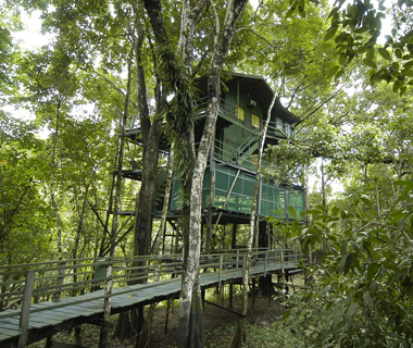 Here Are 8 Of The Awesomest Tree Houses Around The World