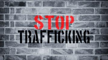 stop sex trafficking