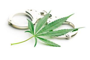 marijuana arrests