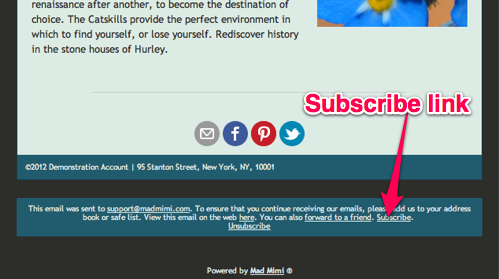 Email Marketing Footer Subscribe Link
