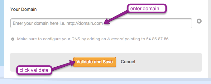 """enter domain and click """"Validate and Save"""" to set up the Custom Domain add on in Mad Mimi"""