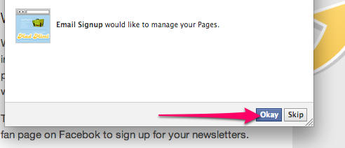 Facebook Signup Request for Page Access, click okay