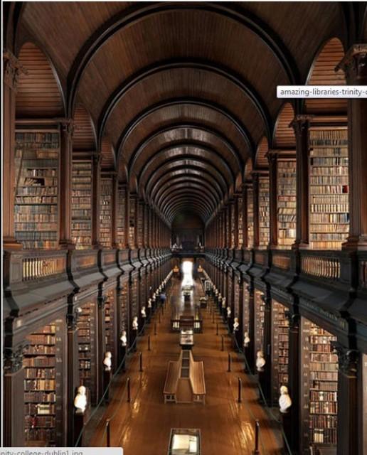 big-beautiful-libraries (3)