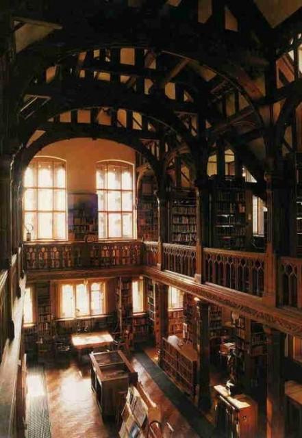 big-beautiful-libraries (8)