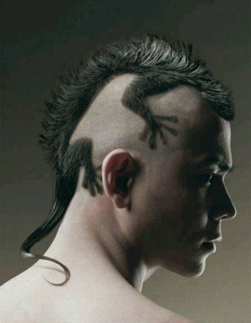 crazy-haircuts (4)