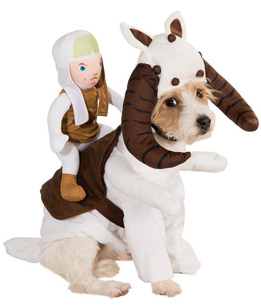 dog-star-wars-costume (3)