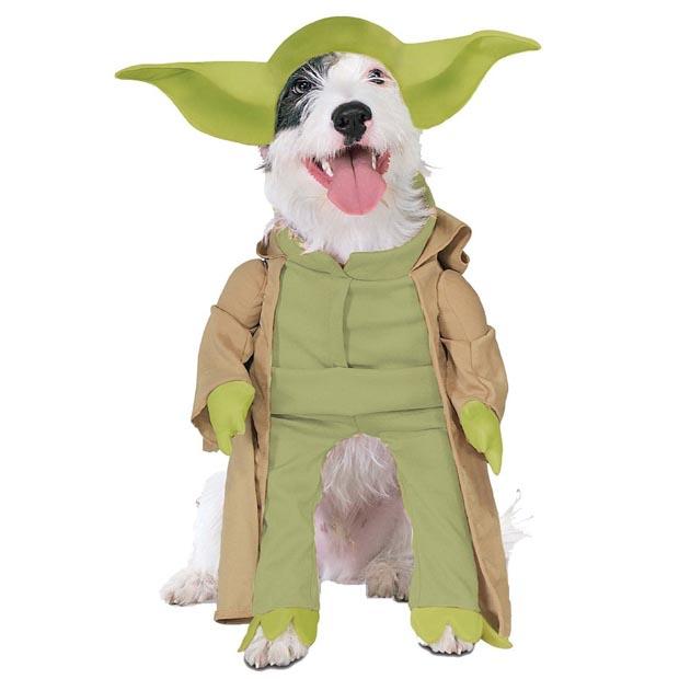 dog-yoda-costume-star-wars (1)
