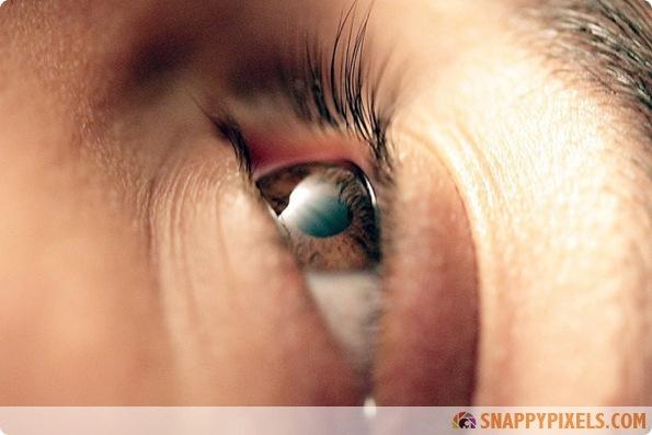 amazing-animal-eye-pictures-16