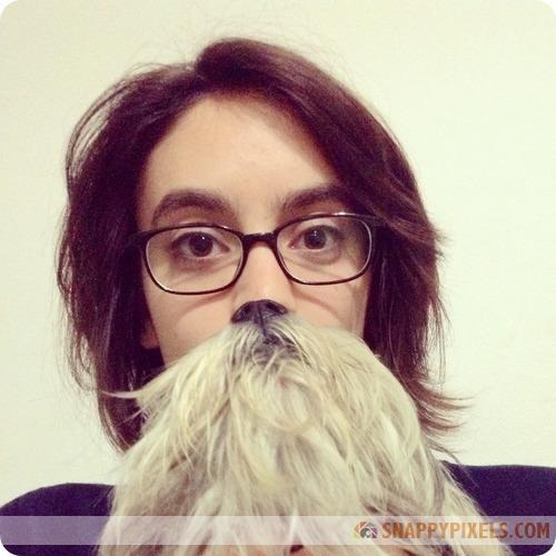 attractive-dog-beards-1