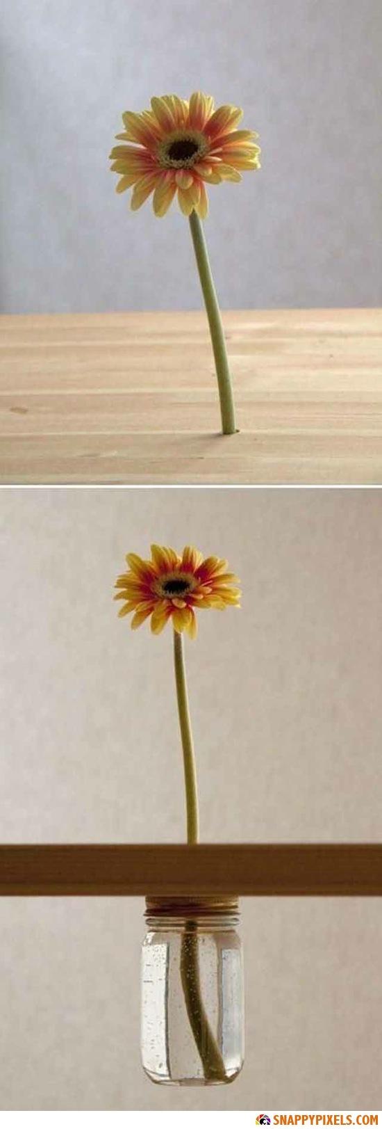 brilliant-simple-ideas-10