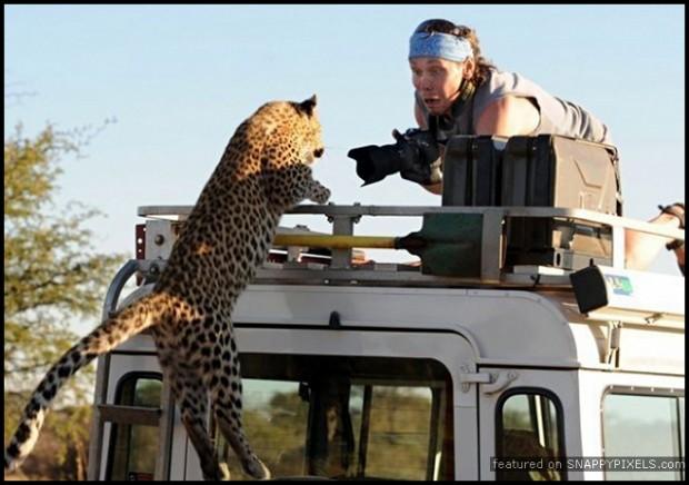 crazy-dangerous-photographers-1