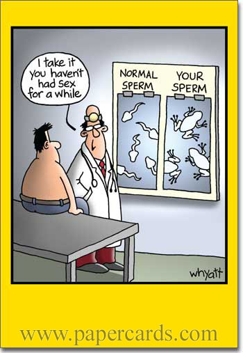 funny-greeting-cards-4