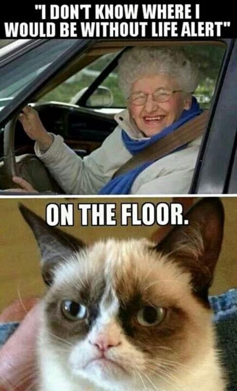 grumpy-cat-meme-sadden-your-day (1)