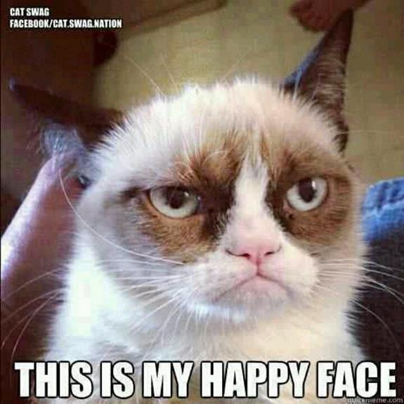 grumpy-cat-meme-sadden-your-day (11)