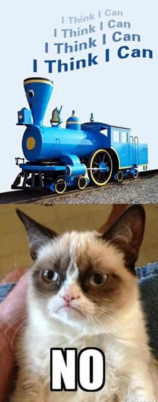 grumpy-cat-meme-sadden-your-day (18)