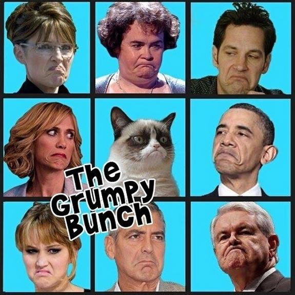 grumpy-cat-meme-sadden-your-day (20)