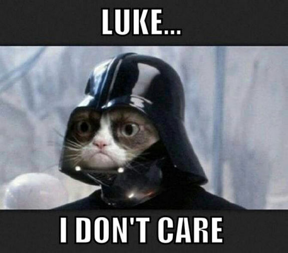 grumpy-cat-meme-sadden-your-day (21)