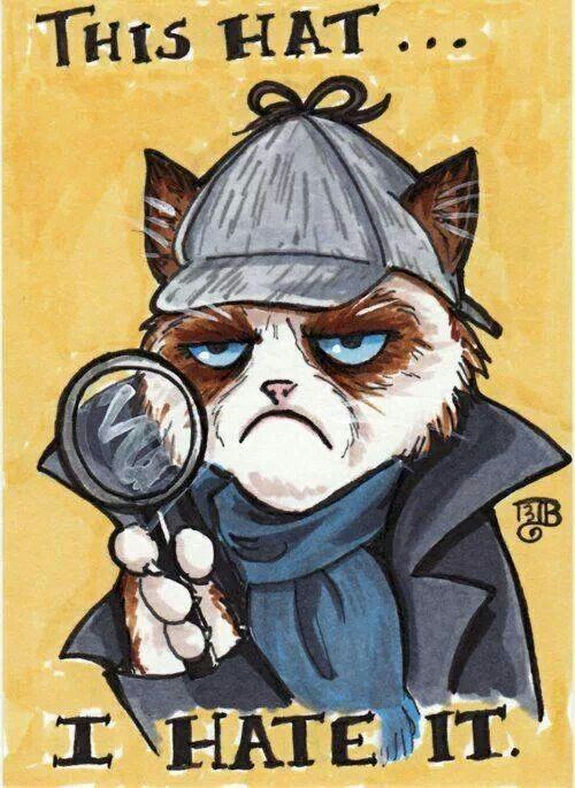 grumpy-cat-meme-sadden-your-day (24)