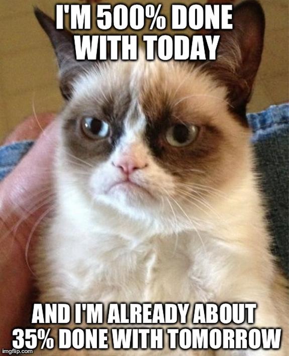 grumpy-cat-meme-sadden-your-day (28)