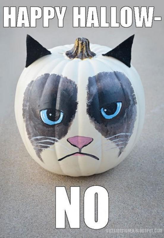 grumpy-cat-meme-sadden-your-day (29)