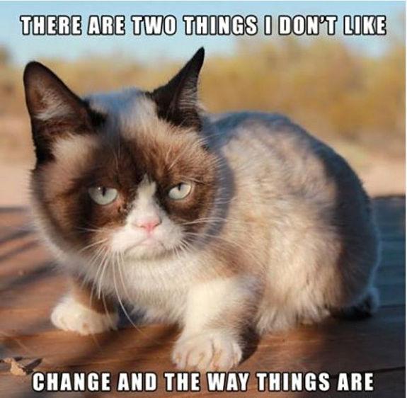 grumpy-cat-meme-sadden-your-day (32)