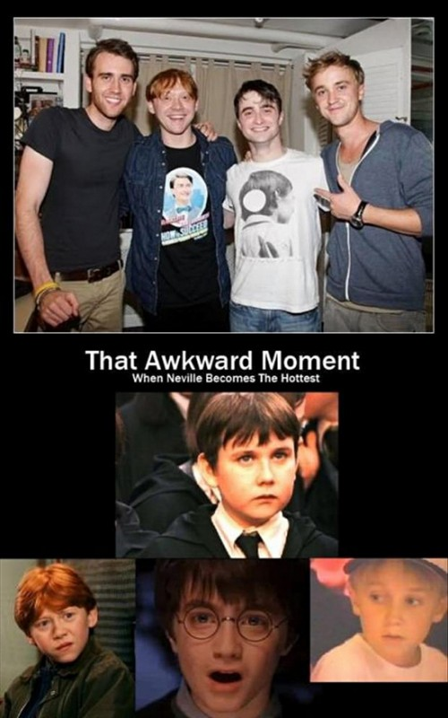 harry-potter-pictures-funny-pictures-snappy-pixels