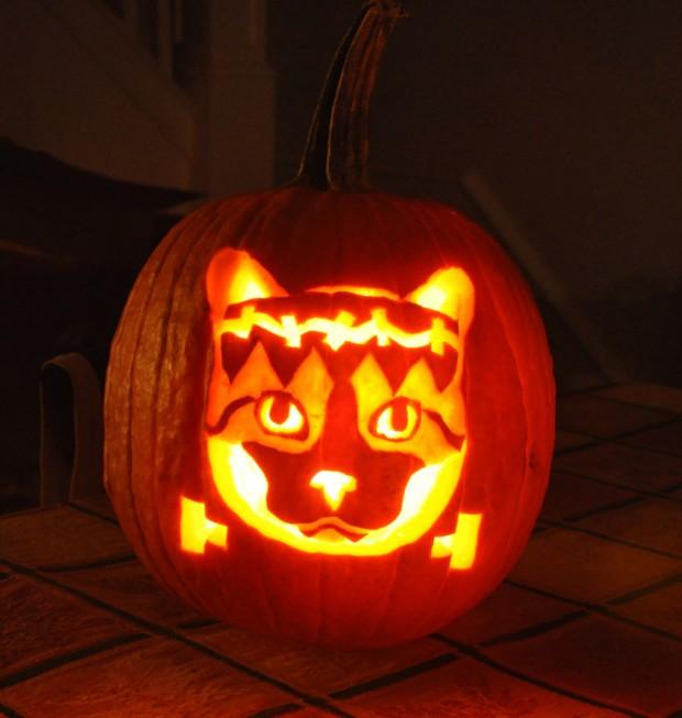 funny pumpkin17