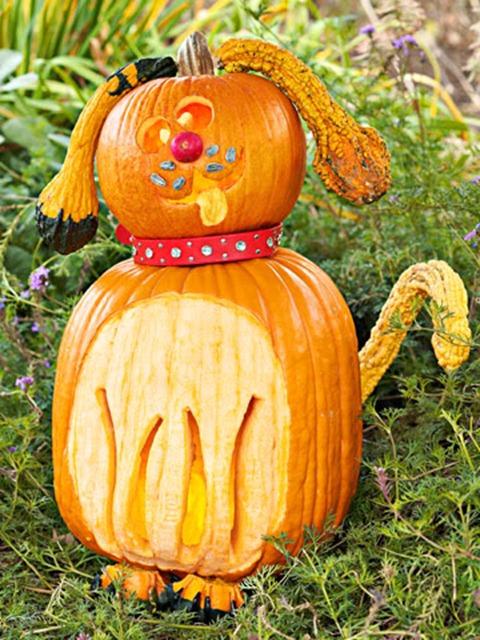 funny pumpkin38