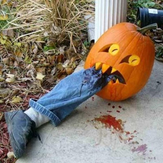 funny pumpkin58