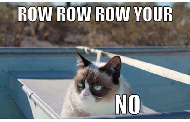 great-grumpy-cat-memes-18