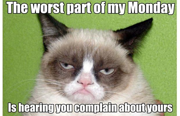 great-grumpy-cat-memes-21