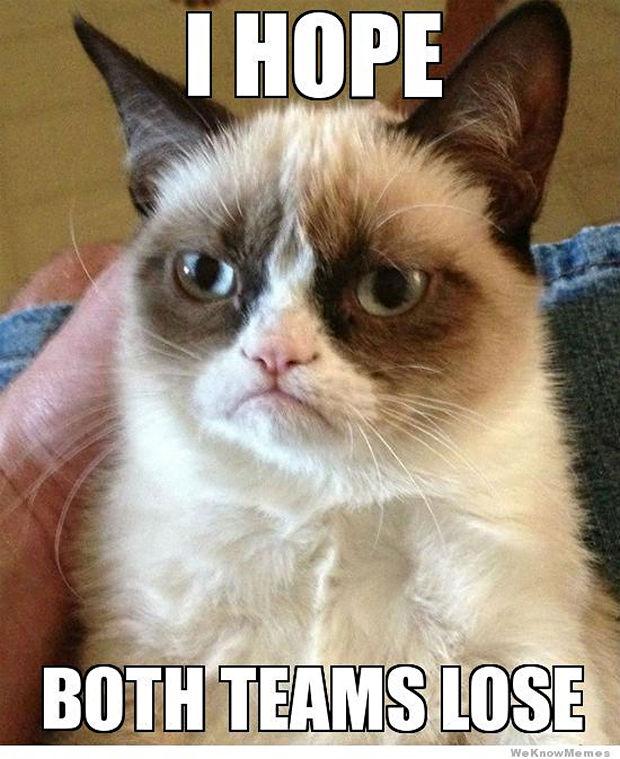 great-grumpy-cat-memes-30