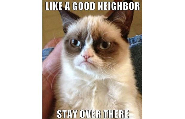 great-grumpy-cat-memes-9
