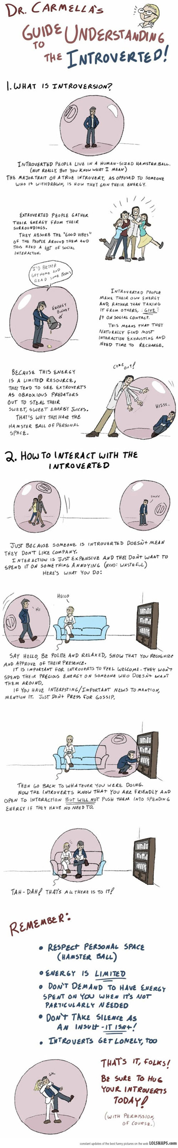 An Important Guide to Understanding Introverts
