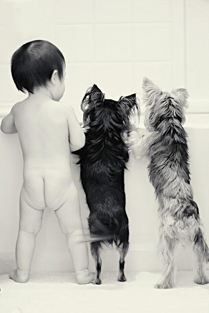 pictures-puppies-babies-2
