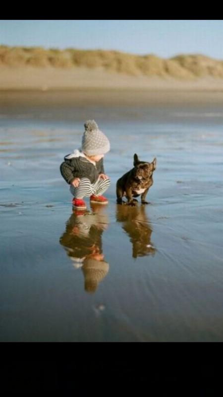 pictures-puppies-babies-6