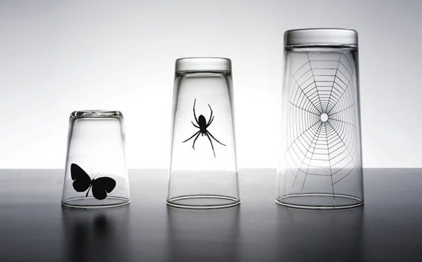 butterfly and spider web glass set