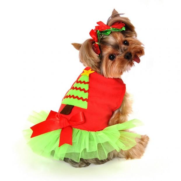 christmas_tree_dog_costume__79591.1377977045.1280.1280