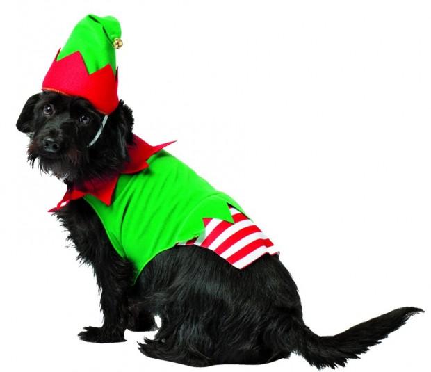 elf_christmas_pet_costume