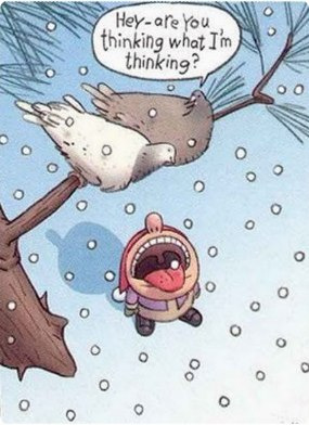 funny-Christmas-Card-idea-20