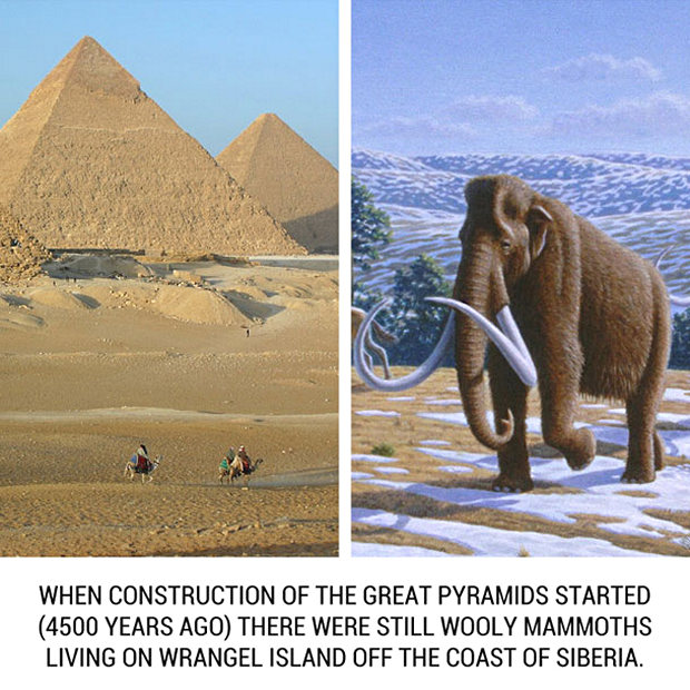 historical-events-that-happened-at-the-same-time-16