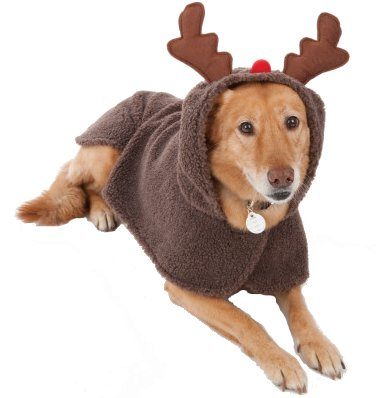 petholiday-reindeer-costume