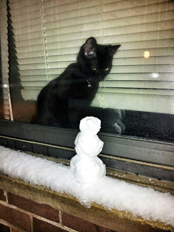 creative-funny-snowman-pictures-33