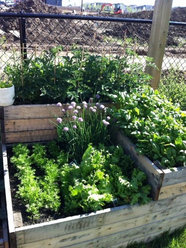 ideas pallets raised garden beds (9)