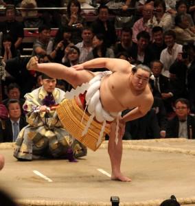 sumo 6