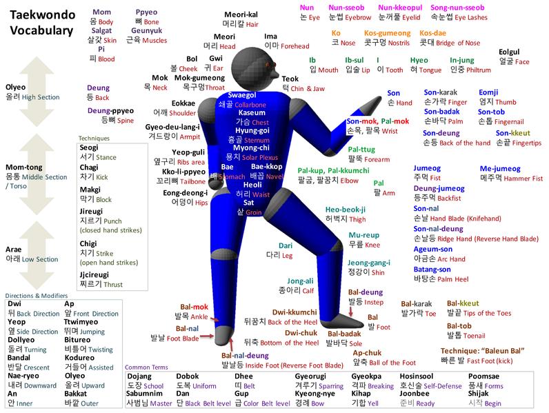 Taekwondo Vocabulary by Truejim  Source: Wikimedia Commons